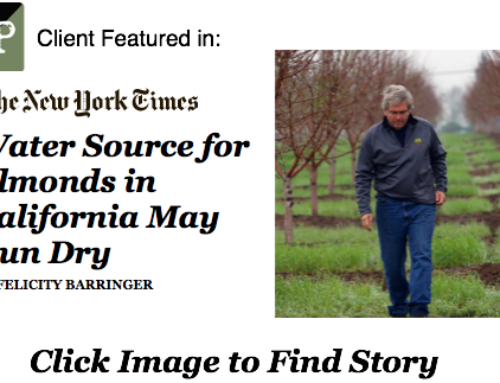 Client Feature in New York Times